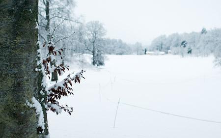 En försmak av vintern